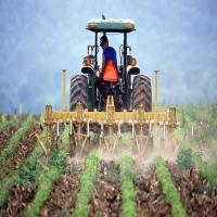 Земеделски производител- регистрация, осигуряване, данъчно облагане